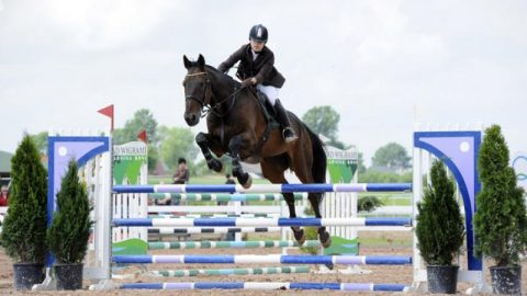 Moja Pasja –Jeździectwo